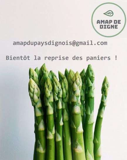Reprise des distribution de paniers de légumes